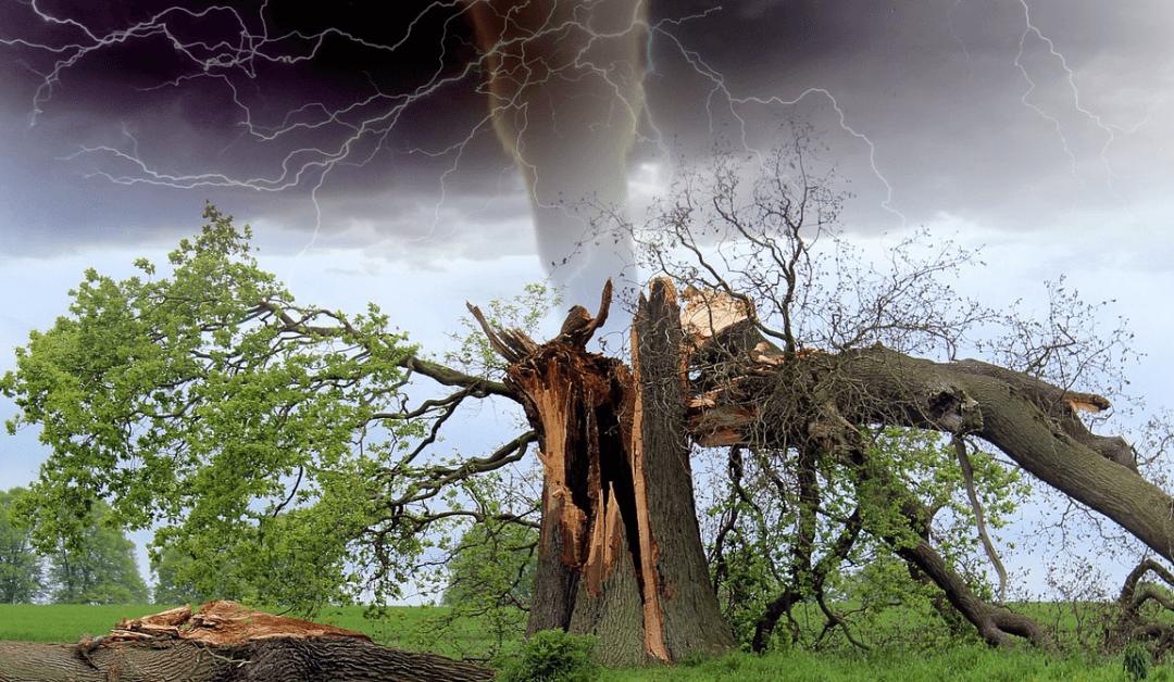 Insurance Companies Near Me Want to Prepare for Hurricane Season